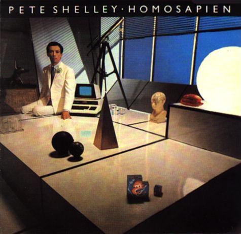 Homosapien Vinyl